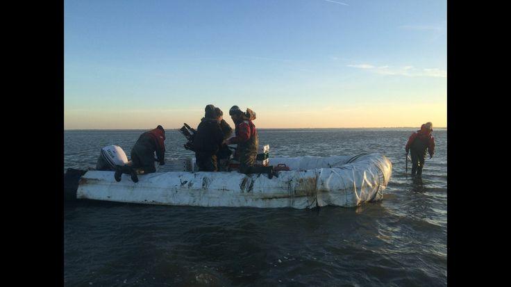 Productie Pluijm's eetbare wereld Nederland. Op pad met Pluijm & crew op de wadden oesters rapen.