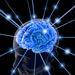 IQ Test   IQ Test Online   IQ-Brain   http://www.iq-brain.com/
