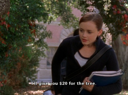 """I'll give you 20 dollars for the tree."" -RoryRory Gilmore, English Major, I M, Specific Trees, Gilmore Girls 3, Book, Superstitious Student, Dr. Who, Classic Rory"