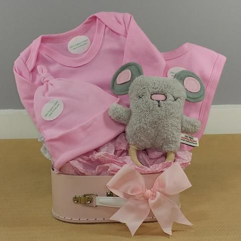 41 best baby girl gifts images on pinterest baby girl gifts little mouse organic baby girl hamper negle Images