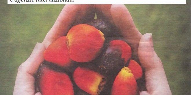 La falsa verità delle aziende sull'olio di palma. Investimento pubblicitario milionario. Ma l'ISS precisa: ridurre subito il consumo per i bambini