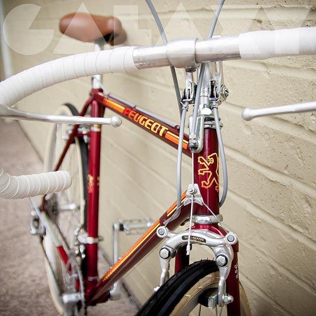 #instagram @galaxybikes 1983 PEUGEOT 52cm Road Bike . . . Fits  5'5 to 5'8 . . FOR SALE @ galaxybikes.com . . . . #Galaxybikes #galaxy #bikes #sf #vintage #bikeporn #vintagebikes #roadbikes #bianchi #peugeot #bike #fixedgear #cycling #bicycles #bicycle #steelframe #1980s #hipster #sanfrancisco #pdx #bicycles #bike #bikefriendly #velo #bici #fixie #classic #retro #bikeshop #bikeart #1983 #peugeotbicycle https://instagram.com/p/5QGbztDWP2/ // my instagram https://instagram.com/wolkanca