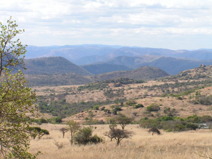 Itala game reserves South Africa