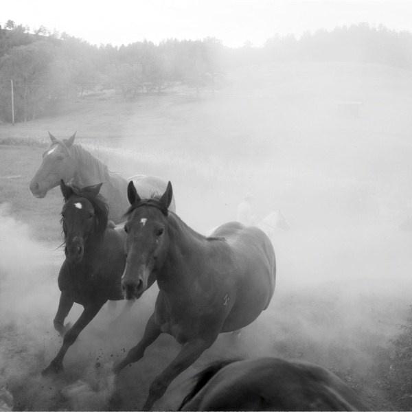 Running horses in during Shape magazine shoot @ Runamuk Guest Ranch, Montana, USA