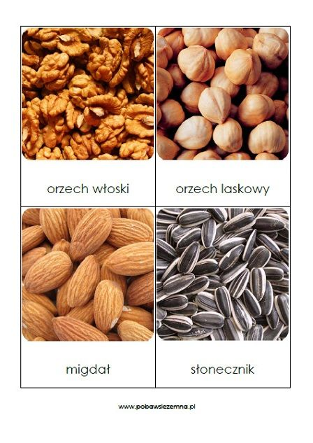 Pestki, nasiona, orzechy i ziarna - karty do rozwoju słownictwa