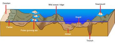 punggung laut Punggung Laut Adalah rangkaian perbukitan di dalam laut dan kadang-kadang muncul di permukaan laut. Punggung laut terjadi karena tenaga endogen yang berupa proses tekanan vertical. Contohnya Punggung Laut Sibolga