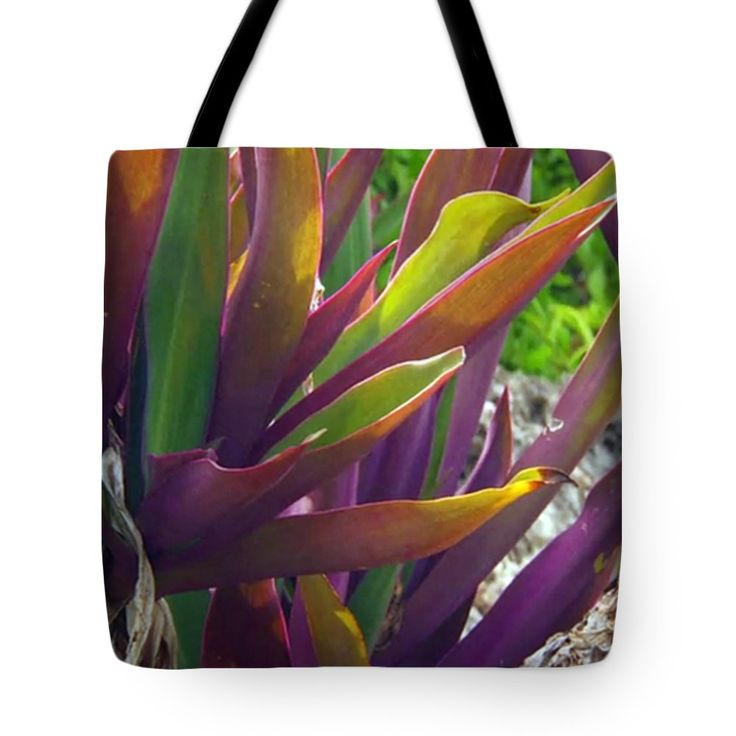 """Amazing Coral Reef Vegitation Plants that can live during high tides as well as prolonged low time s Tote Bag by NAVIN JOSHI (18"""" x 18"""").  The tote bag is machine washable, available in three different sizes, and includes a black strap for easy carrying on your shoulder.  All totes are available for worldwide shipping and include a money-back guarantee."""