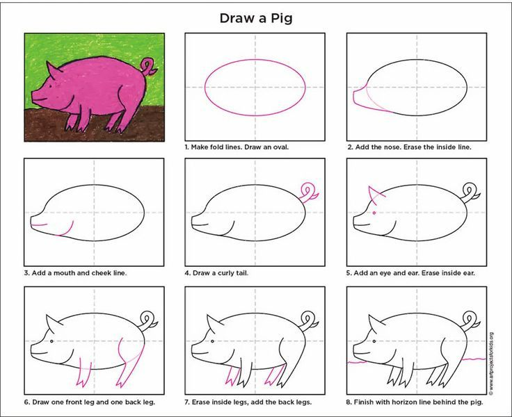 how to draw a pig step by step for beginners