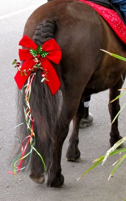 Love the big christmas bow horse mane tail braids for How to decorate horseshoes