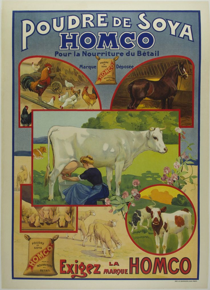 Soy powder  Homco  for livestock feed  demand Homco brand