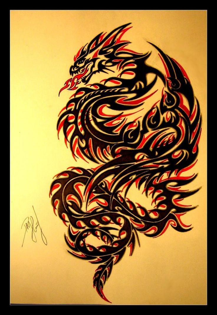 28 best fire dragon tribal tattoo designs images on for Dragon fire tattoos