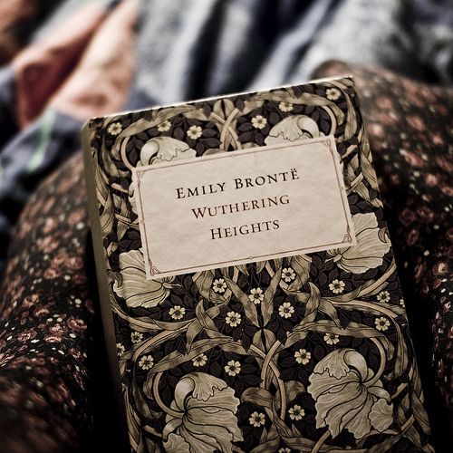 "17) Wuthering Heights, Emily Brontë, 1847 ""It doesn't seem like you're into this anymore. I'd hope you would tell me."" (photo by i am not Ana)                                                                                                                                                                                 More"
