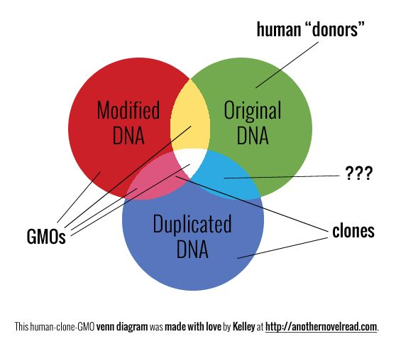 media pushed forward on topic of human cloning Cloning and the chinese tony blankley | posted: and thus has created a hybrid rabbit-human embryo as the chinese push forward.