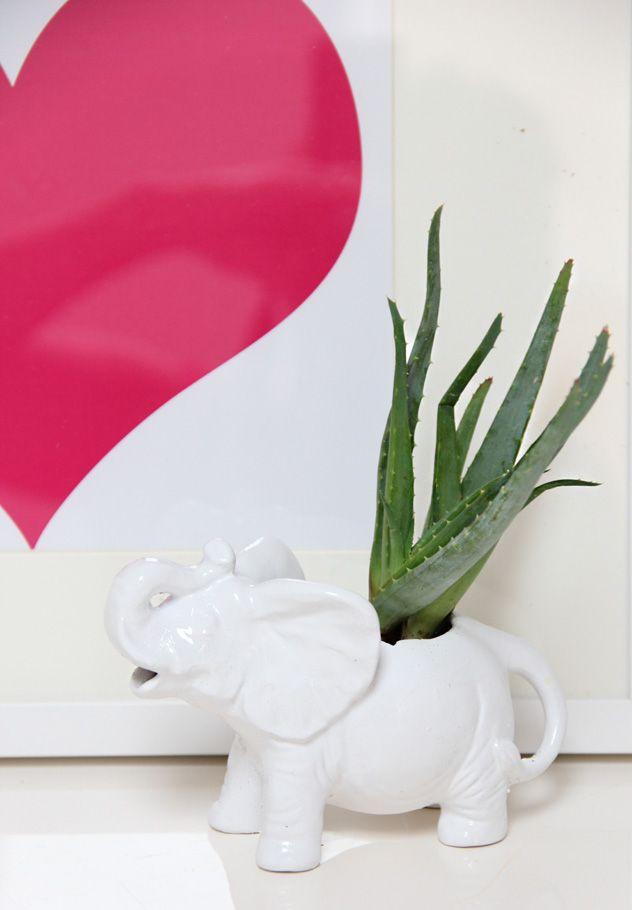 Anthro Ellie Creamer- elephant succulent planter