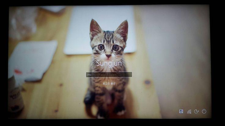 윈도우10 로그인 배경을 바꿔봤습니다