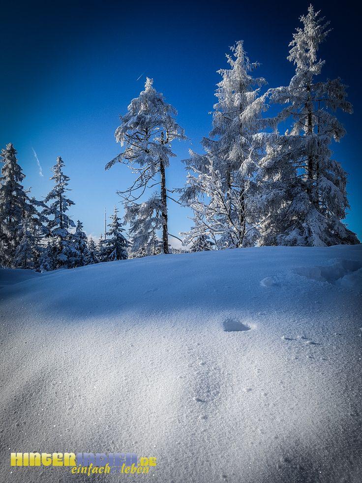 """Schnee in den """"hinterindischen"""" Winkeln Frankens! Freuen Sie sich auf eine tolle Wintertour. Demnächst bei HINTERINDIEN.DE ..."""