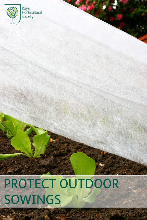 Royal Horticultural Society (RHS) - Protect early outdoor sowings with fleece and polythene.