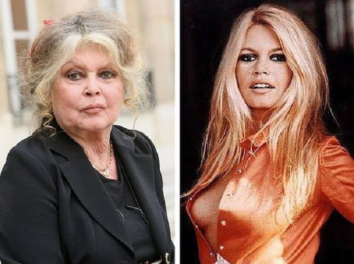 Французская актриса, певица и общественный деятель, воплощение женственности и…