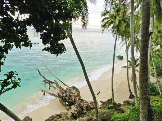 Sumur Tiga Beach on Weh Island: Weh Island is quite unspoiled and you can expect less-crowded dive sites while having yo...