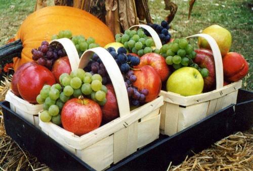Foodesign Fresh Fruit Basket: 64 Best Fresh Fruit Baskets Images On Pinterest
