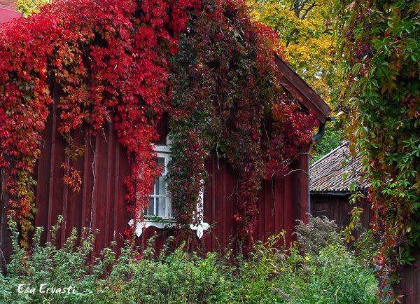 Billnäs, Finland. Photographer Esa Ervasti