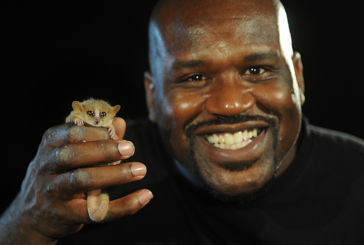 Retired NBA superstar and newly minted Ph.D. Shaquille O ...
