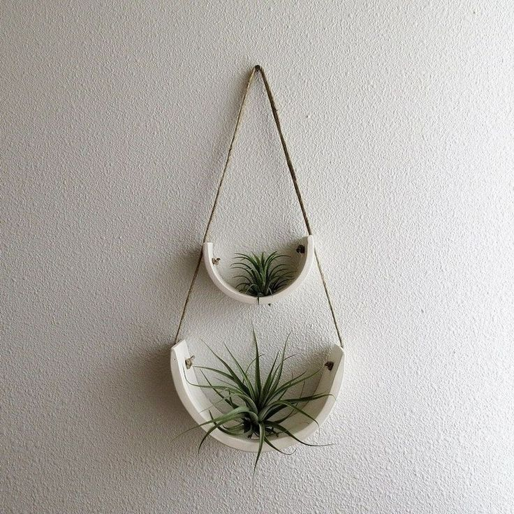 42+ Lovely Plant Decor Ideas for Your House
