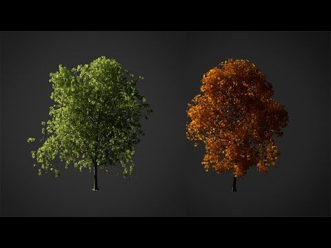 How to Create a Realistic Tree in Blender