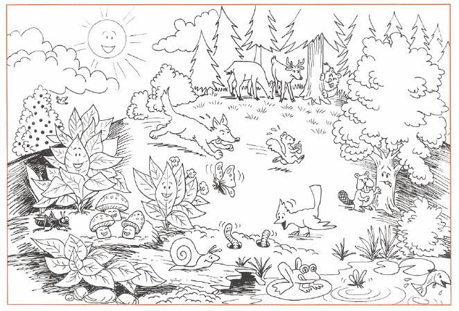 forest coloring pages - photo#34