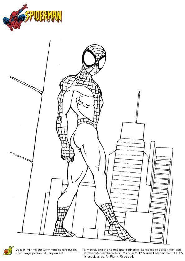 Les 159 meilleures images du tableau coloriages super h ros sur pinterest coloriage super - Coloriage spiderman portrait ...