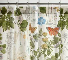 Poppy Botanical Print Shower Curtain | Pottery Barn
