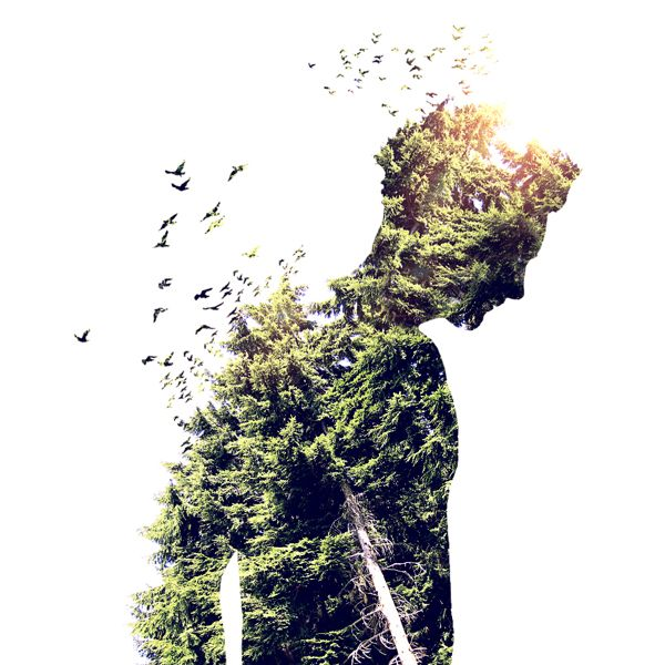 Varietats: Double Exposure by Martin Knight