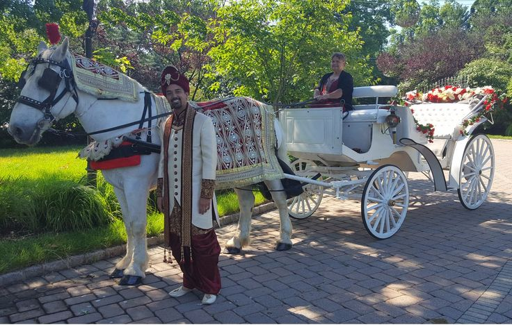 17 Best Images About Indian South Asian Wedding Horses Carriages And Other Suppliers In New