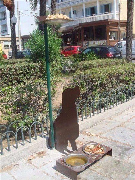 Так на острове Родос (Греция) решают проблему с бездомными животными.  На каждом углу там стоят такие профили собаки, у которых в ногах всегда полные миски, а над ними — поднос с кормом для птиц. Наполняют их водой и кормом простые жители.