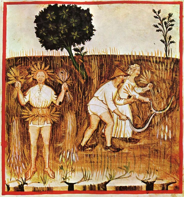 Tacuina Sanitatis, XIV secolo