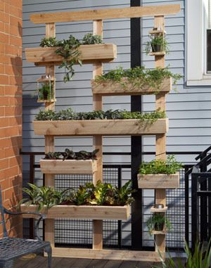 DIY Outdoor Living Plant Wall, great for urban gardening.