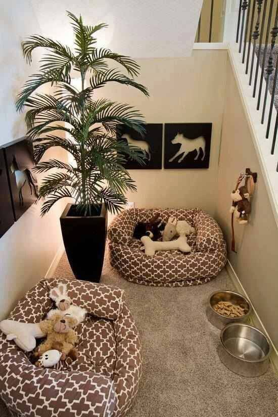 AWESOME dog room!