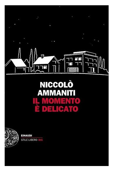 Niccolò Ammaniti, Il momento è delicato