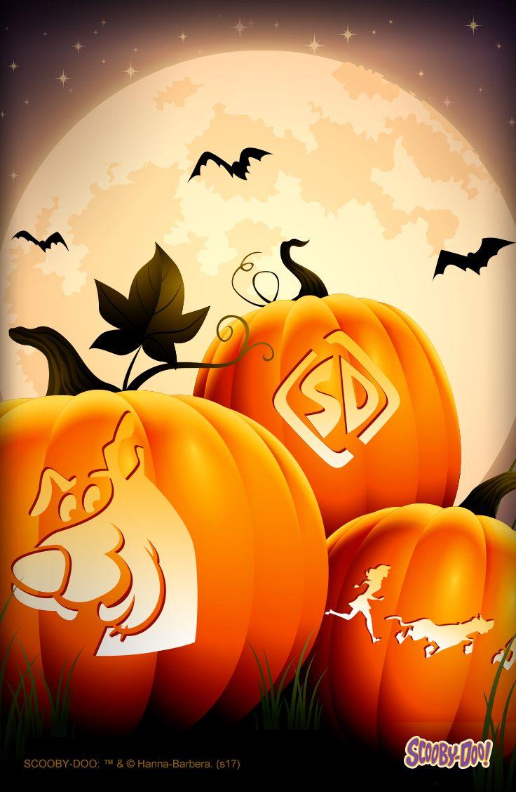 Best pumpkin ideas images halloween decorations