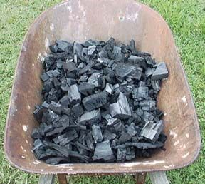 HOW TO MAKE CHARCOAL AT HOME  - click on the link under the picture once you get to the site