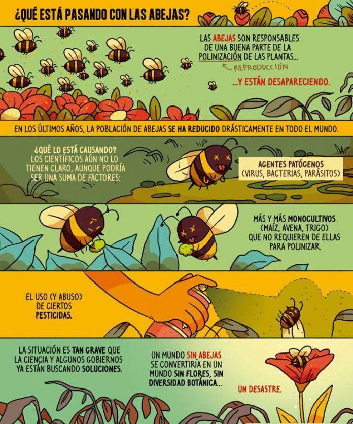 Infografía: Pinterest