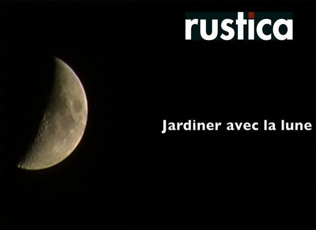 Lune montante et lune croissante : Hubert le jardinier vous conseille pour bien jardiner avec la lune et comprendre tout son vocabulaire technique.