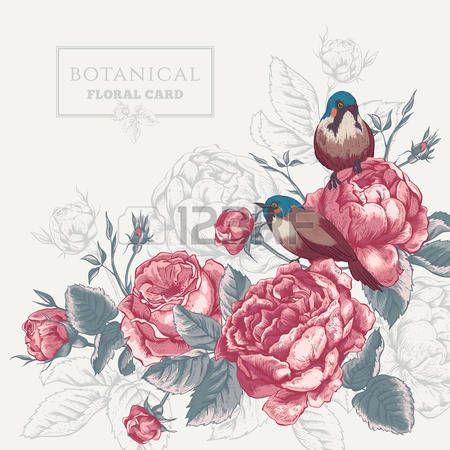 romantische: Botanische bloemen kaart in vintage stijl met bloeiende Engels rozen en vogels, vector illustratie op een grijze achtergrond