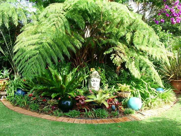 various kind of tropical plants for tropical garden in the large grass backyard complete with tropical flowers and pond plus fountain also lush tropical