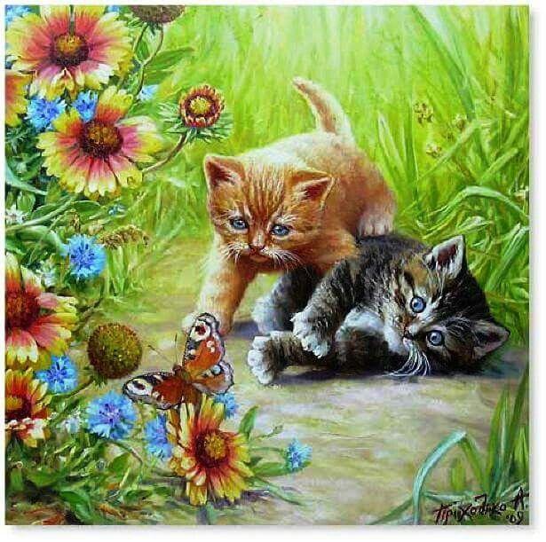 Открытка кошка с бабочками, однокурснице просто так