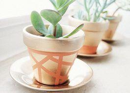 Tutoriale DIY: Cómo decorar maceteros con pintura dorada vía DaWanda.com
