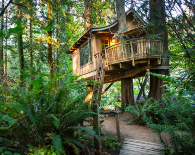 10 Charming Treehouses for Rent Around the World  http://www.theactivetimes.com/10-charming-tree-houses-rent-around-world