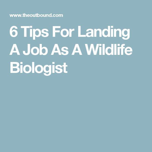 Best  Wildlife Biologist Ideas On   Biologist What