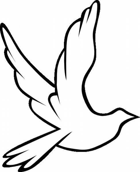 7 besten boyama Bilder auf Pinterest | Friedenstaube, Vögel und Basteln