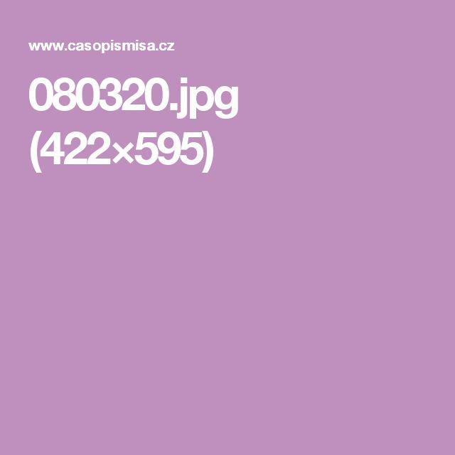 080320.jpg (422×595)
